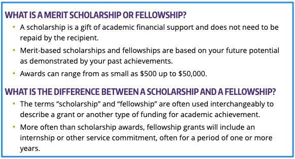 Scholarship vs Fellowship