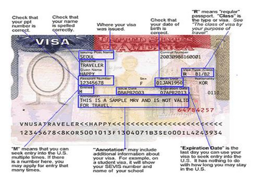 sample usa visa