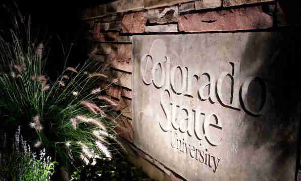 Colorado State University Fort Collins