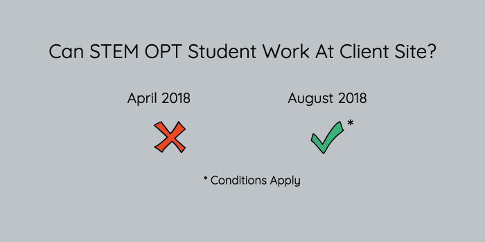 stem opt allowed to work as contractors